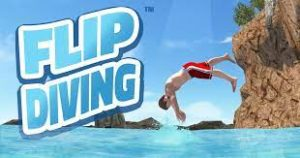 Flip Lover